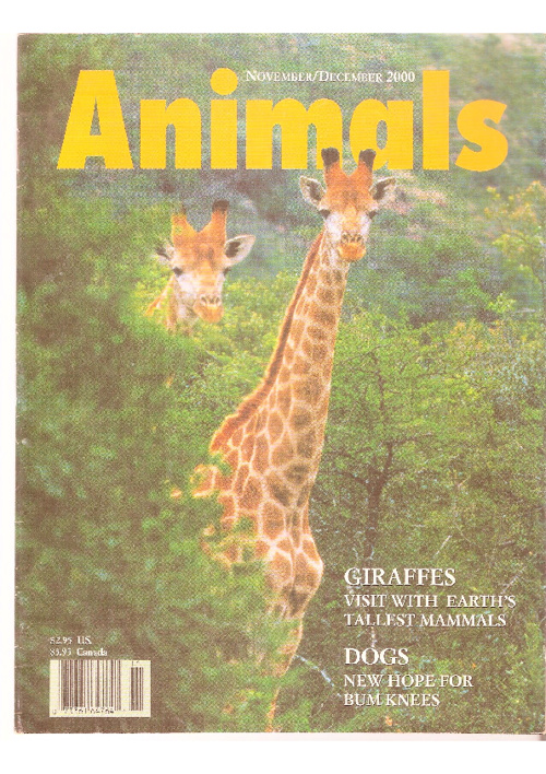 Revista Animals