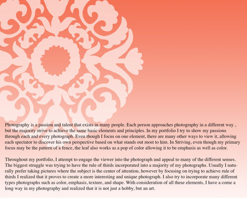 Larissa's Elements & Principles Portfolio