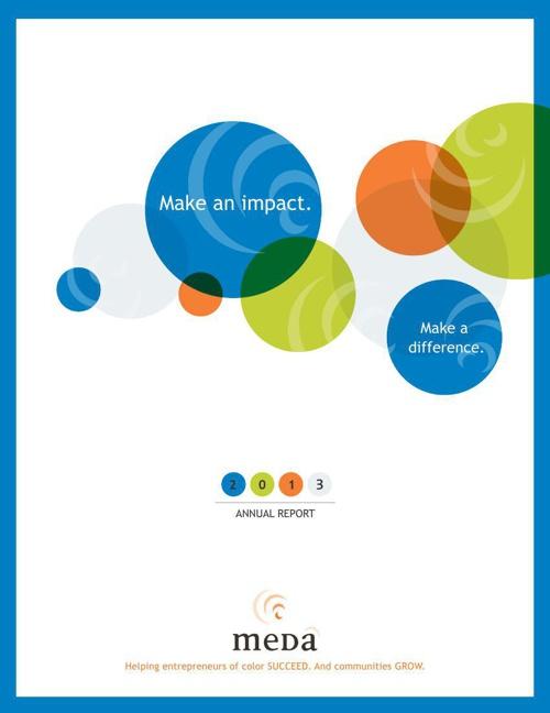2013 Meda Annual Report