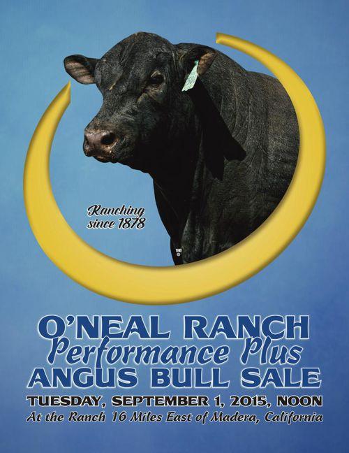OnealBulls2015