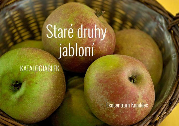 Stare odrůdy jabloní