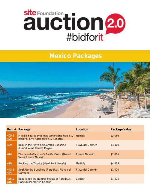 SITE Auction- Mexico