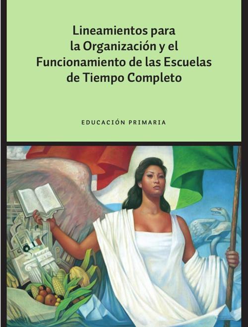 Lineamientos organización y funcionamiento ECT_ Primaria
