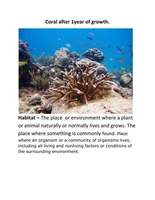 habitat dhruv