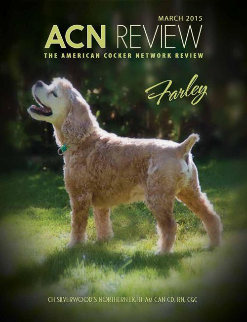 ACN-REVIEW-MAR-2015-Flip