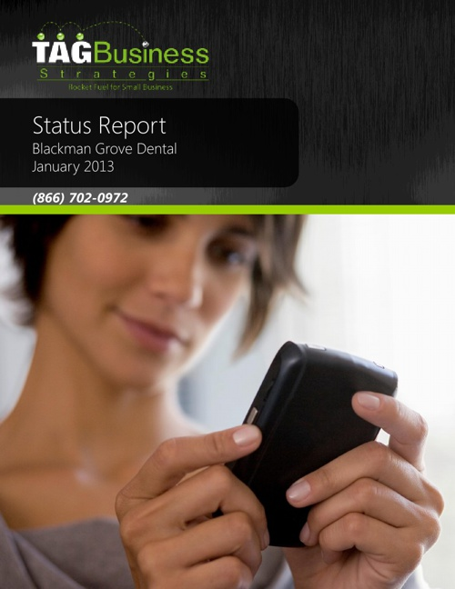BGD Status Report January 2013