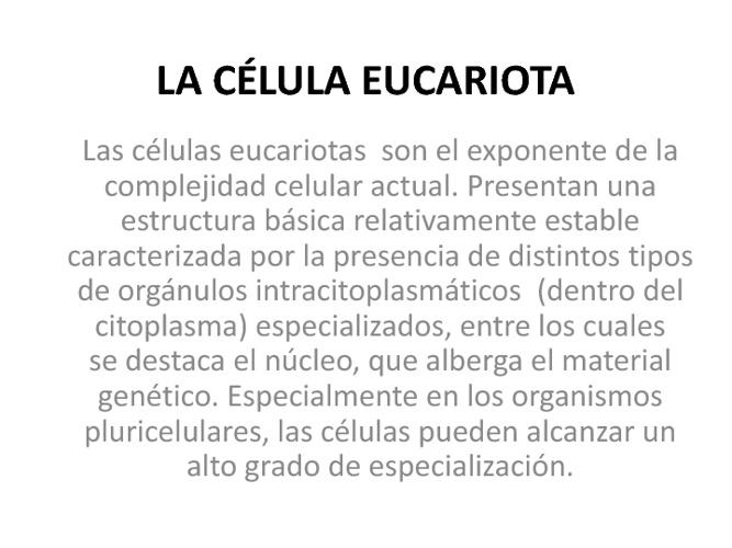 La celula Eucariota