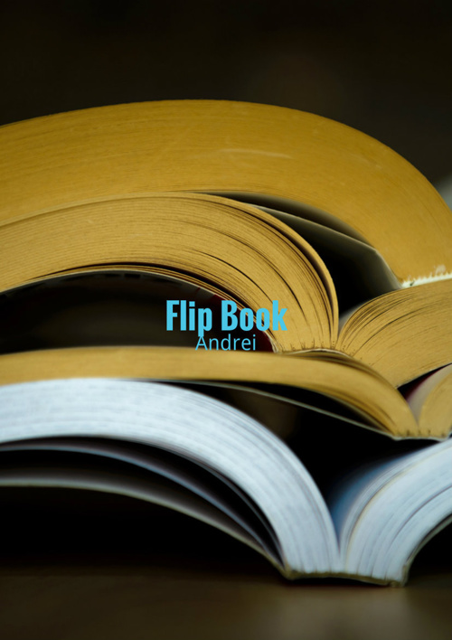 Copy of Flip Book