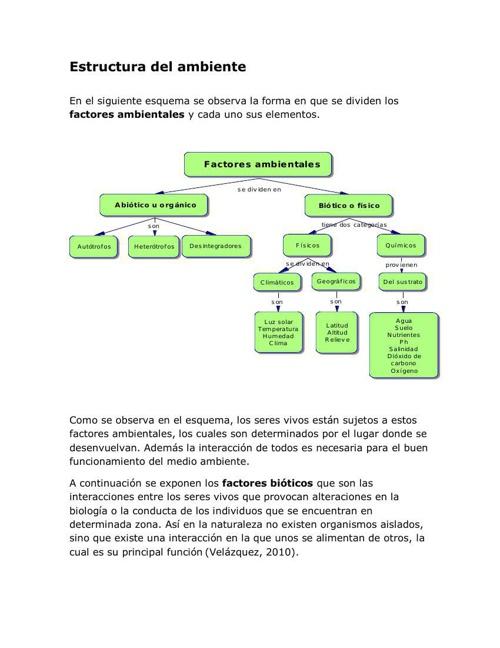 Estructura del ambiente