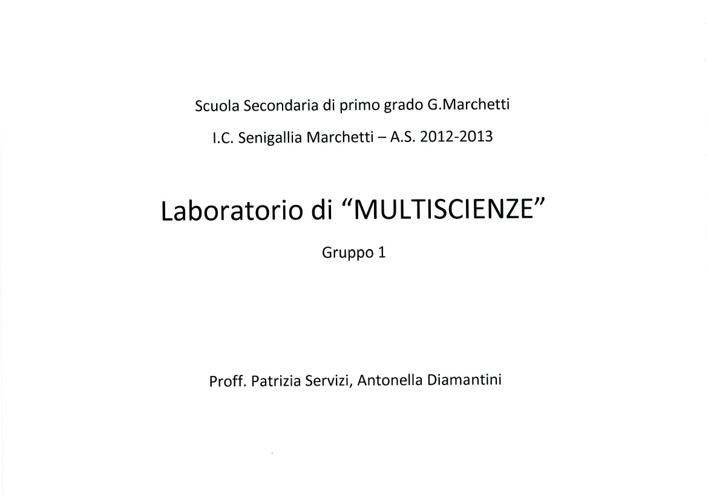 MULTISCIENZE 1