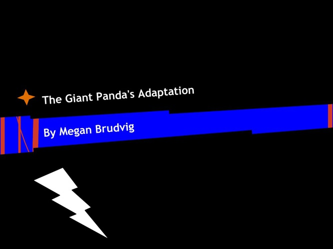 The Giant Panda Adaptations