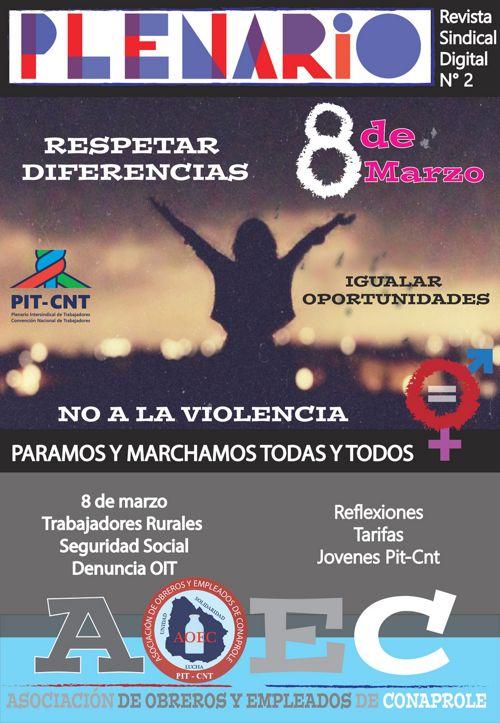 Revista Plenario N°2