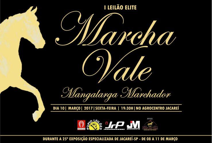 Copy of catalogo Elite Marcha Vale - CURVASjuj