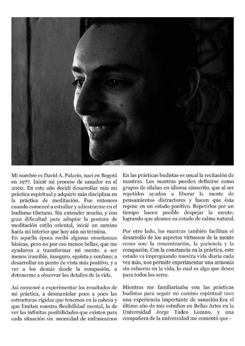 Biografia David Palacio