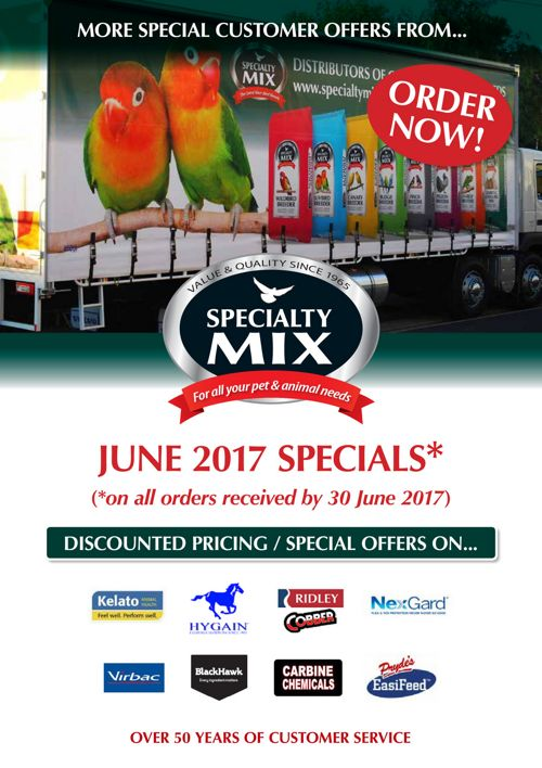 Specialty_EmailPromo_A4_June_06_17