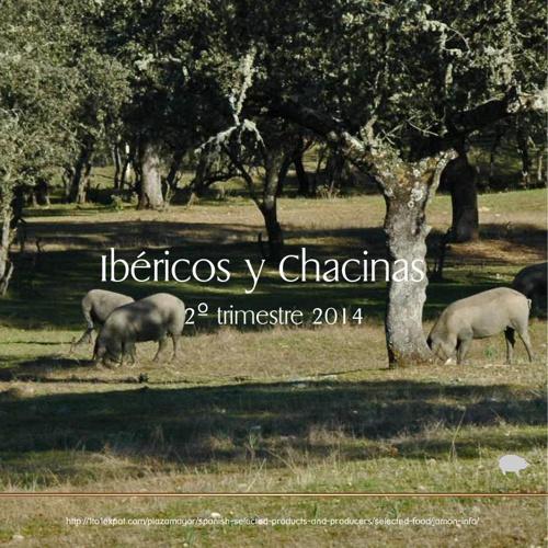 Jamon Iberico - 2014