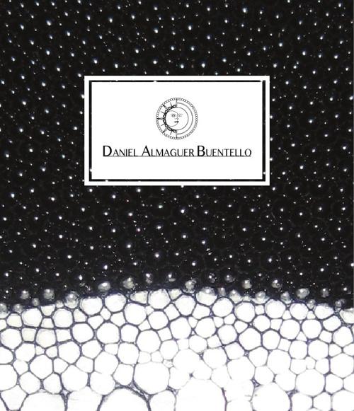 Portfolio 2013 - Daniel Almaguer