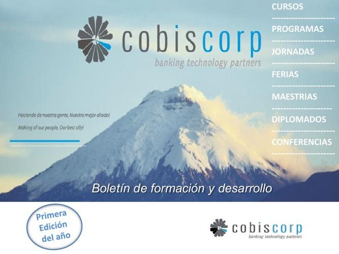 cobislearning  2013