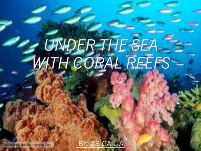 Coralreef FINAL.ABBYPIE