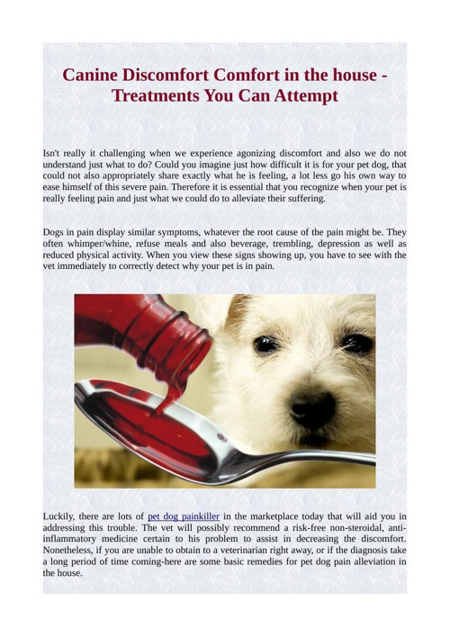 Canine Discomfort Comfort in the house - Treatments You Can Atte