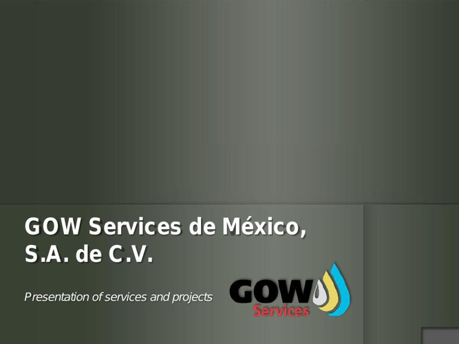 CV_GOWSM_web_English