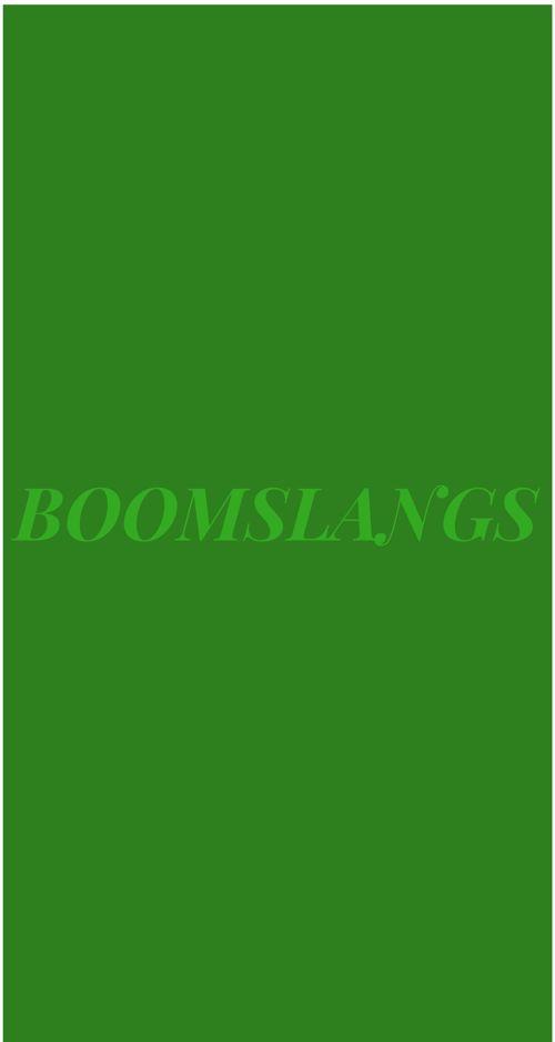 Boomslang snakes