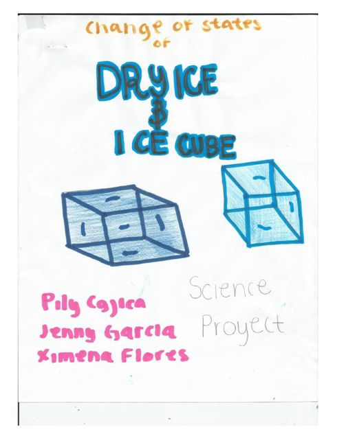 Science fair proyect