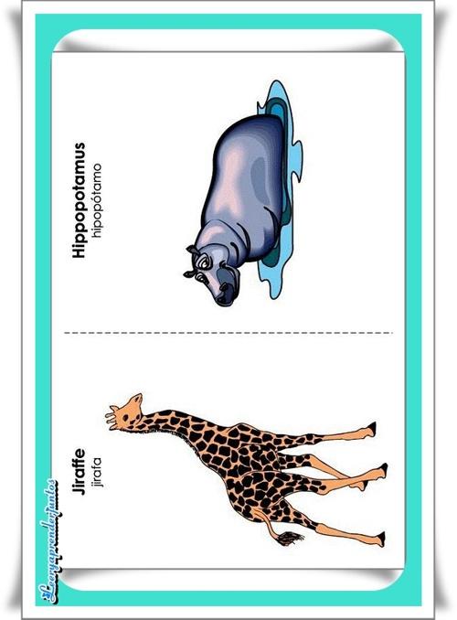 Animales en Ingles 2
