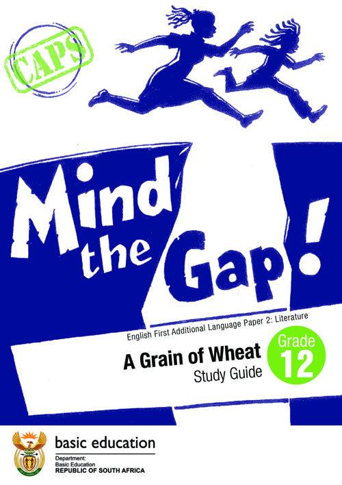 mind the gap business studies study guide grade 12 pdf