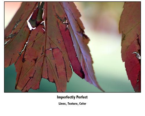 leaf page 1