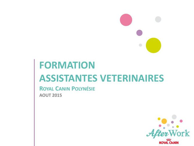FORMATION ASV - AOUT 2015
