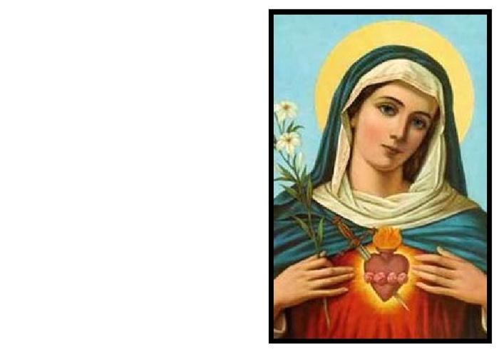 Santini Card for Zofia Salkauskas