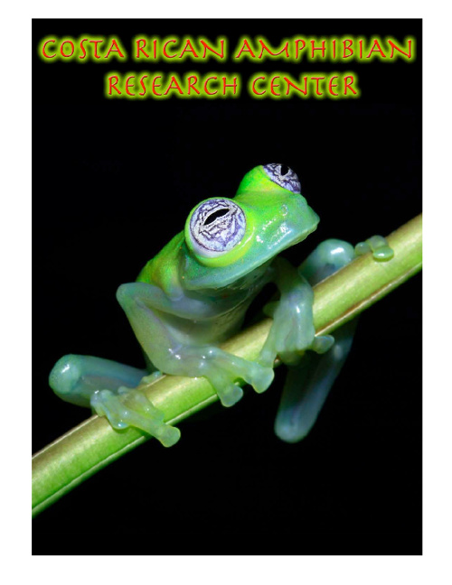 Visiting the Costa Rica Amphibian Research Center