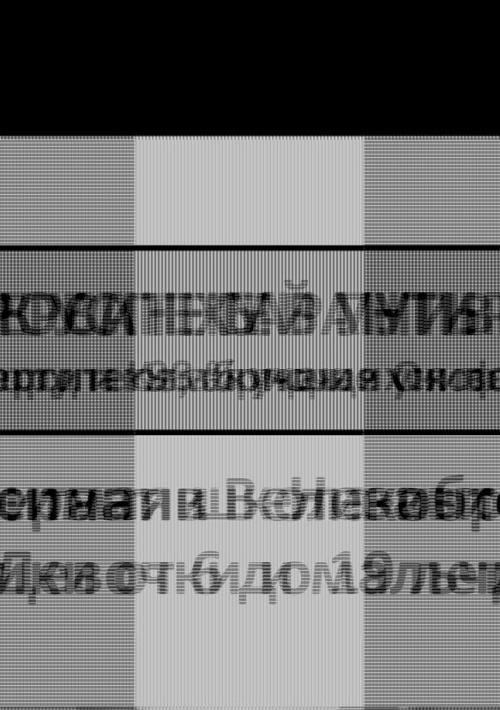 Russian Mini-Prospectus