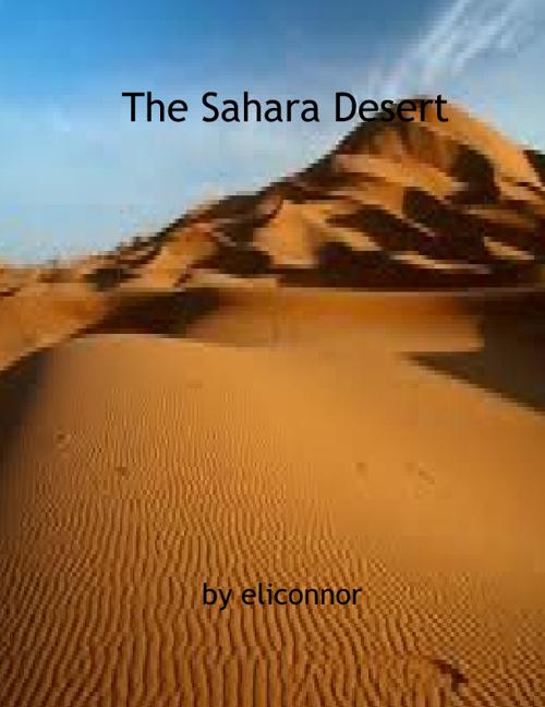 Sahara Desert by Eli