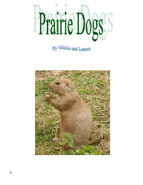 Lauren & Mihika-Prairie Dogs