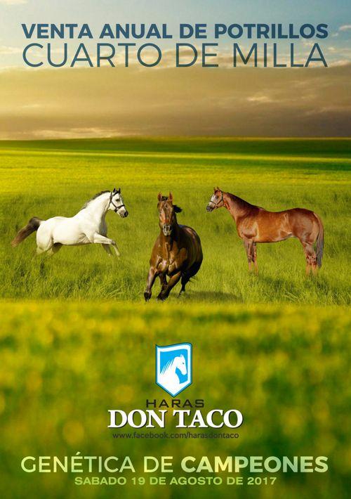 Haras Don Taco