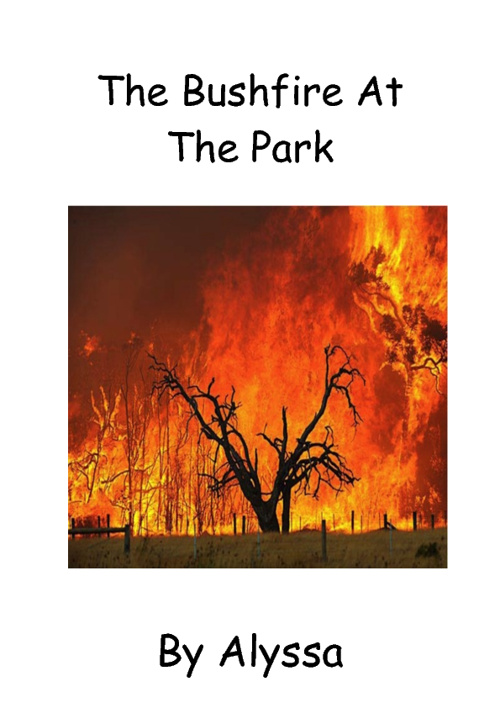 the bushfire at the park