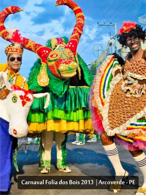 Arcoverde | Carnaval Folia dos Bois - 2013