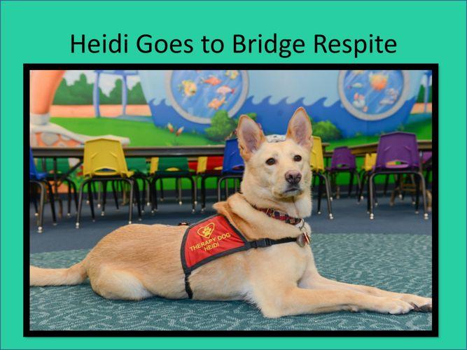 Heidi Goes to Bridge Respite Story