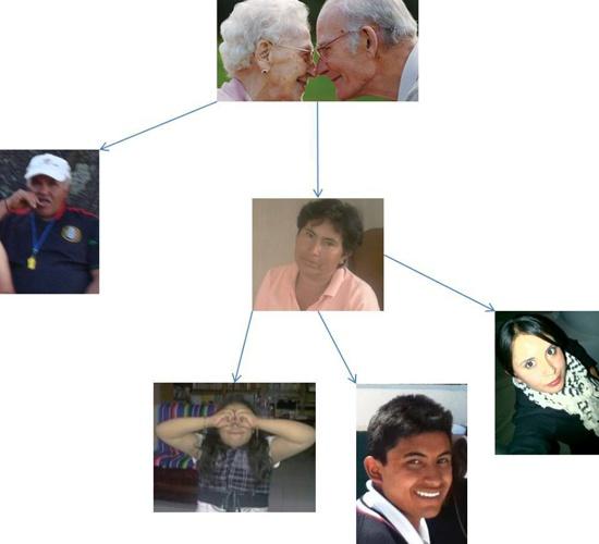 Genety tree