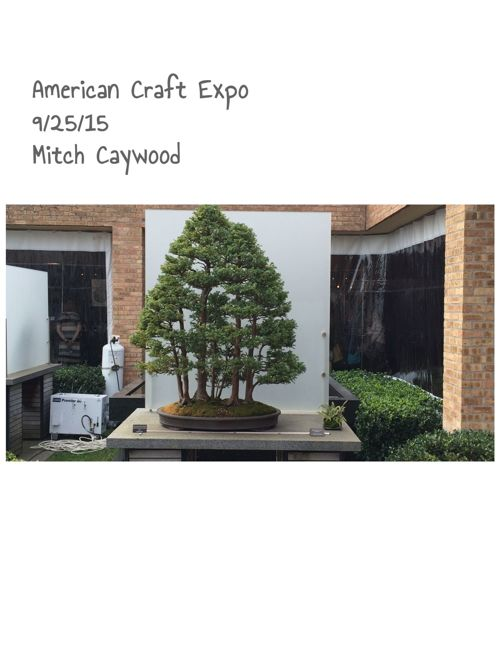 Mitch Caywood: American Craft Expo