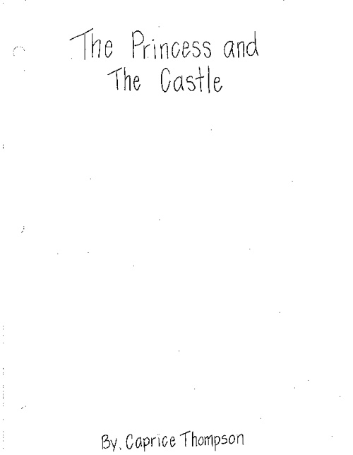 The Princess and the Castle