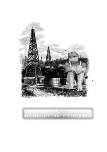 Instituto del Petróleo