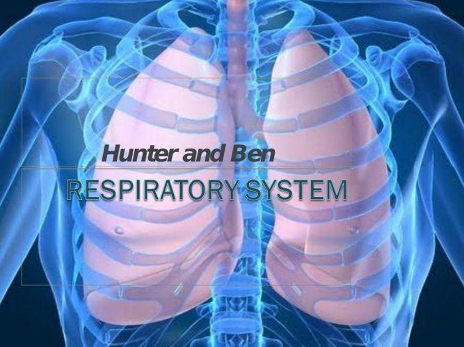 Lakhicharran - Rivera - Respiratory System