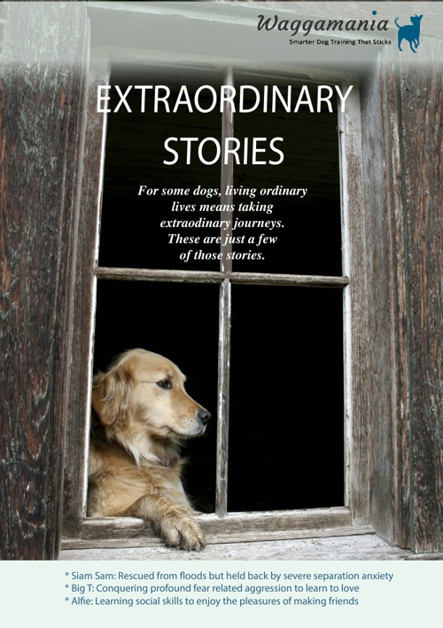 Exraordinary Stories