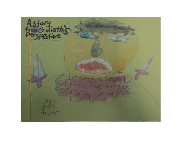 Adi Anker's Book