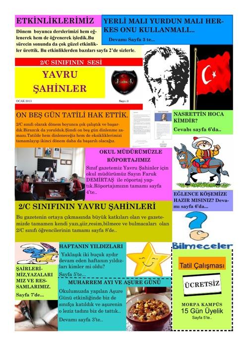 YAVRU ŞAHİNLER