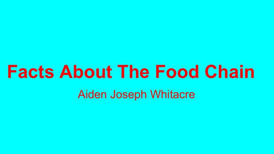Aiden Food Chain Flipbook Template