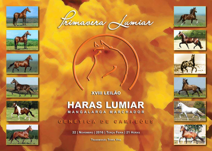LEILAO VIRTUAL PRIMAVER LUMIAR - 2016